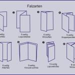 Falzarten